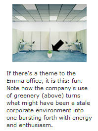 Emma - website office environment