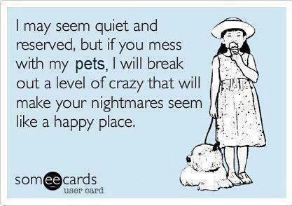 Pets  don't mess with them
